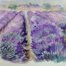 Provence_Titelbild